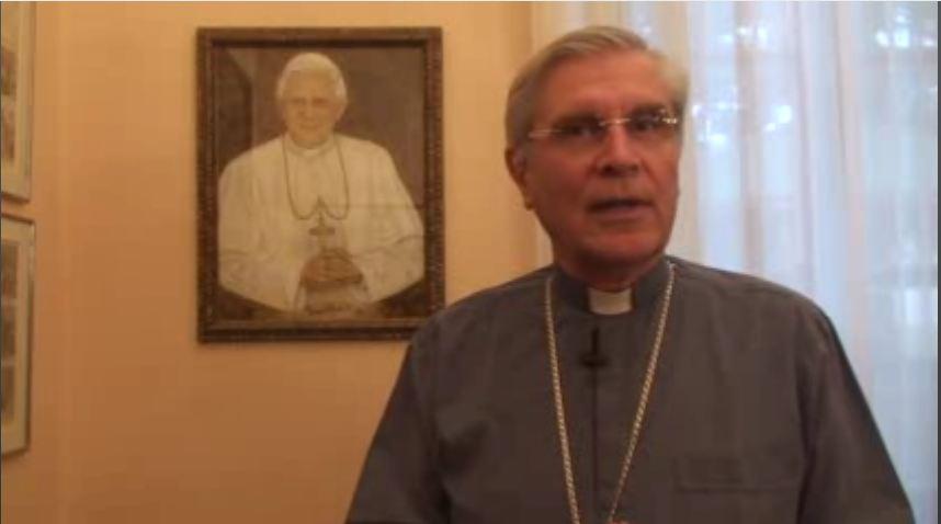 Chronique de Mgr Jean-Michel di Falco Léandri sur la visite quinquennale à Rome