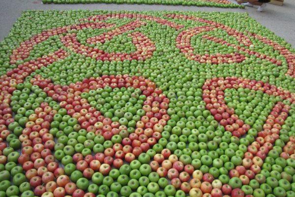 Fête de la pomme des Alpes à Ventavon
