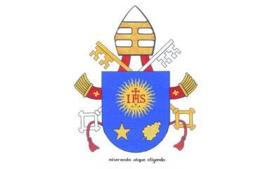 Pape François. Audience du mercredi. Le don de « sagesse »