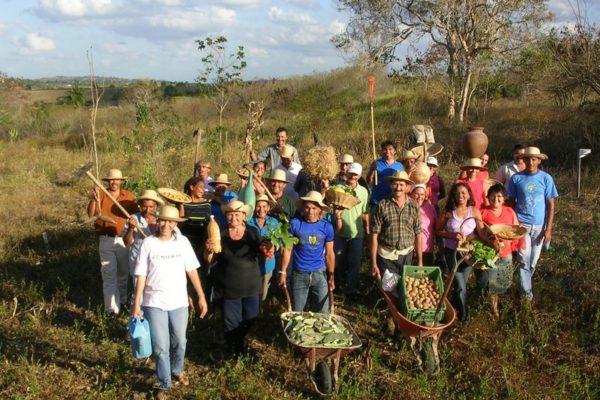 Avec le CCFD – Terre Solidaire, venez écouter la voix du Brésil sur l'agroécologie