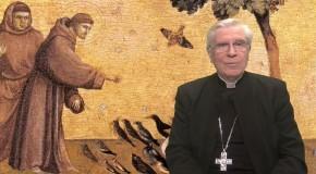 La chronique de Mgr Jean-Michel di Falco Léandri : Les animaux ont-ils une âme ?