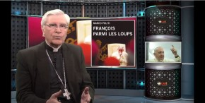 La chronique de Mgr Jean-Michel di Falco Léandri –  François parmi les loups