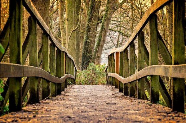Une marche méditation… confinée !