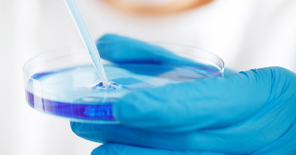 Le projet de loi bioéthique : « Un désaccord abyssal » pour Mgr d'Ornellas